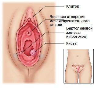 противозачаточные препараты недорогие но эффективные