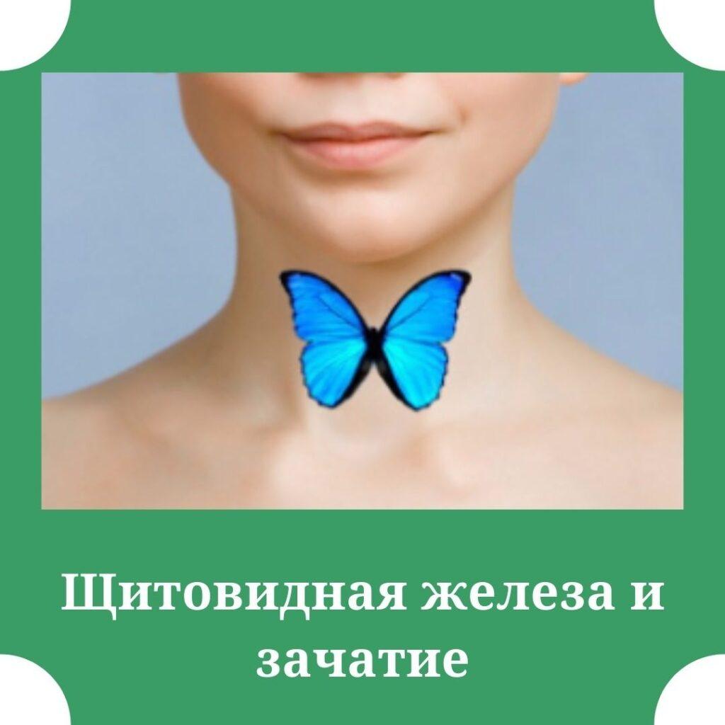 задача щитовидной железы